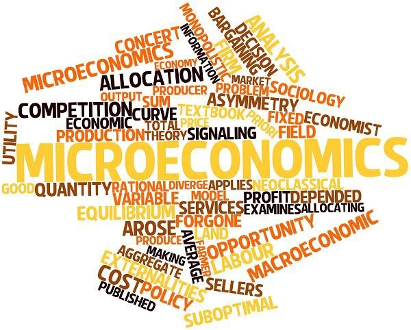 Popular terms in macroeconomic theory in a wordcloud