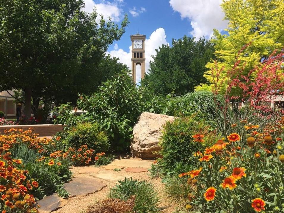 10 Hardest Courses at West Texas A&M University