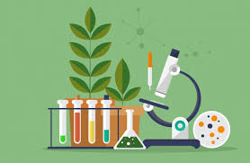 Cartoon picture of biology lab equipment like a microscope. burette and plants