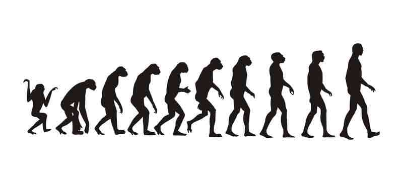 Image of the evolution from ape to man.