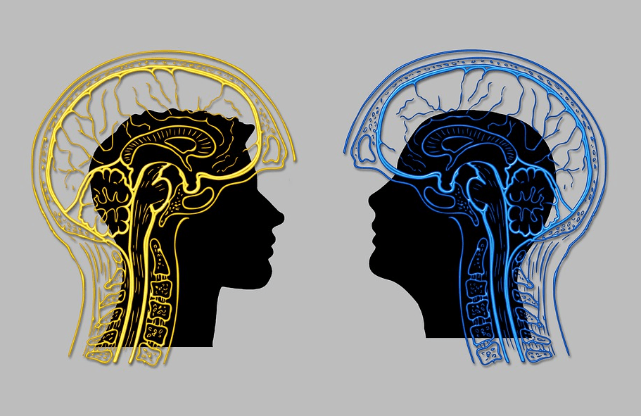 an illustration of a brain behid sillhouettes of two men