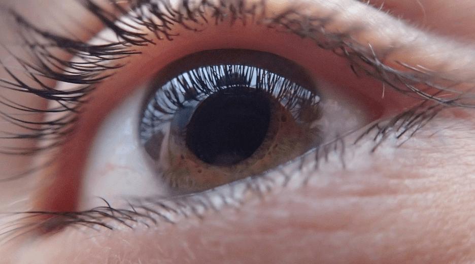 close up shot of an eye