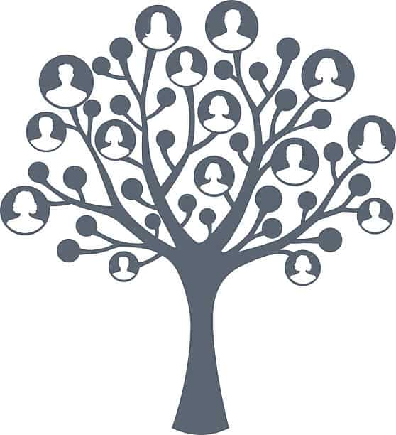 Picture of a family tree cartoon