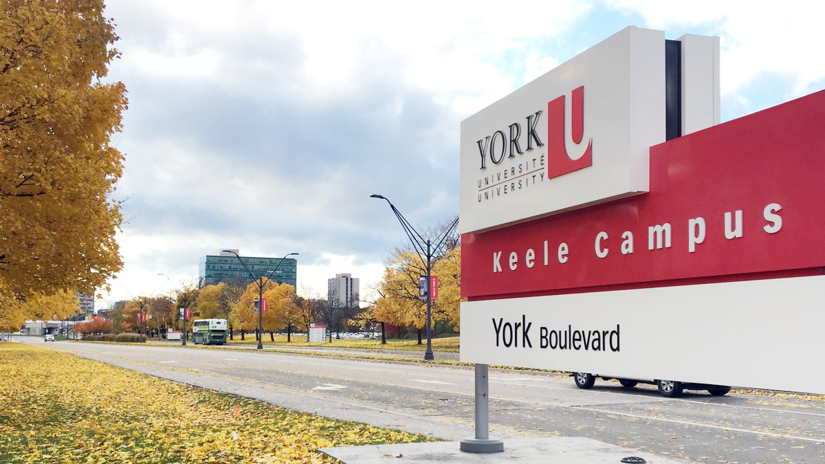 York University Becoming More Dependent on International Students Every Year