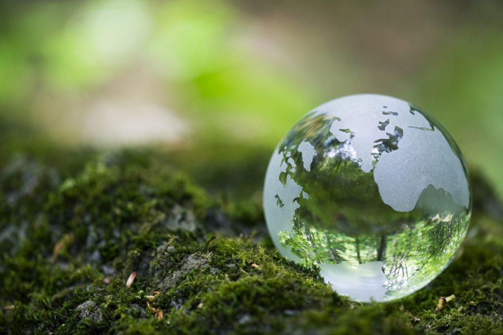 transparent globe on green terrain