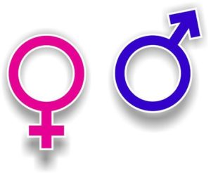 the male and the female symbol for representation