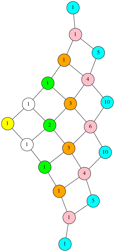 a net of numbers connected to eachother