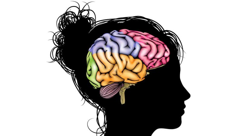 silhouette of teenage girl, colorful brain outlined