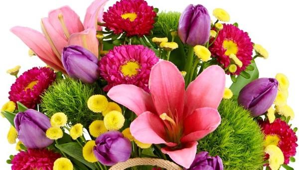 an image of an assortment of flowers