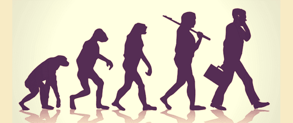 evolution from monkey to man
