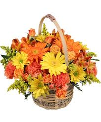 An image of flowers in a basket