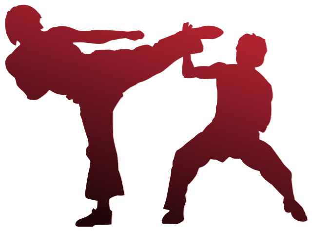 Red and black gradient silhouettes of two men fighting each other. The man on the left is in the middle of a high kick, and the man on the right is defending himself from the kick with his forearm.