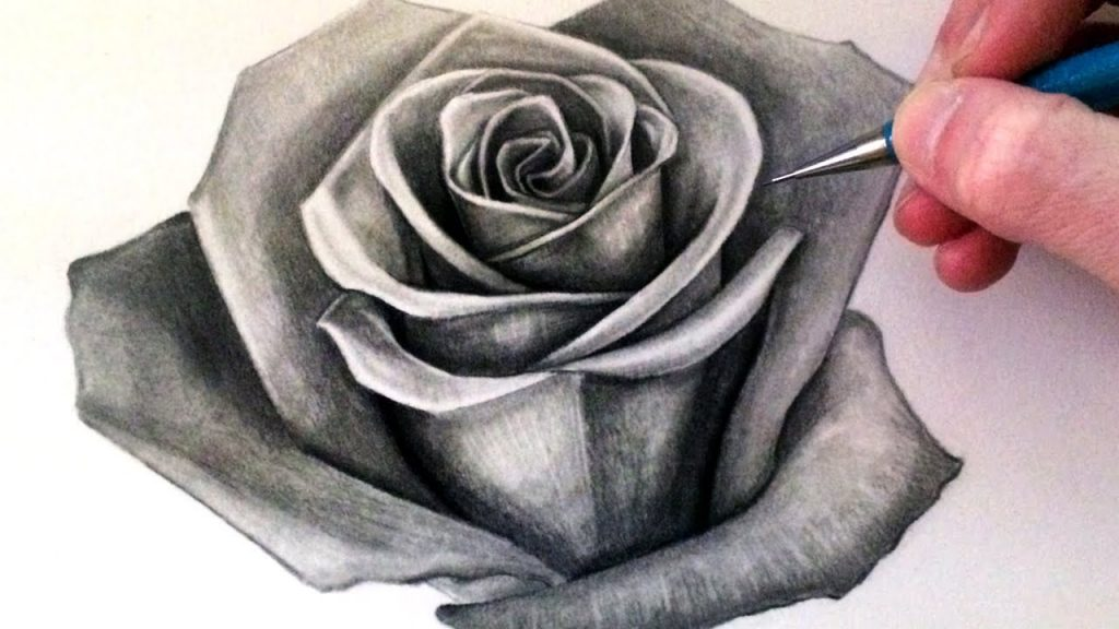 A person drawing a rose flower