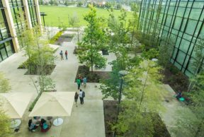 10 Coolest Courses at Valencia College