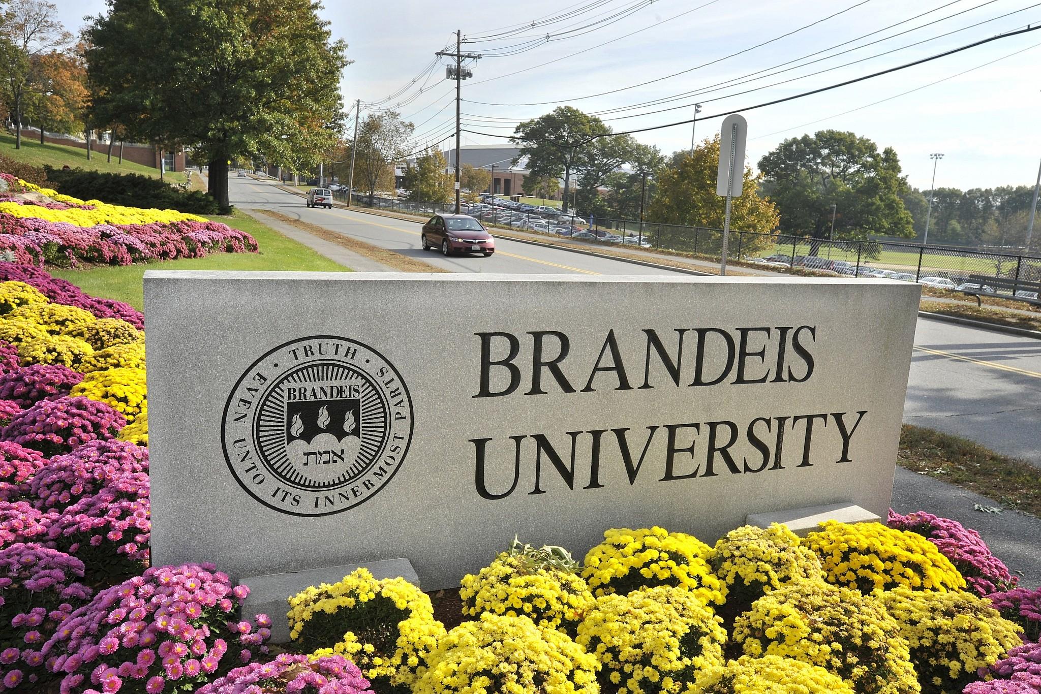 10 Coolest Courses at Brandeis University