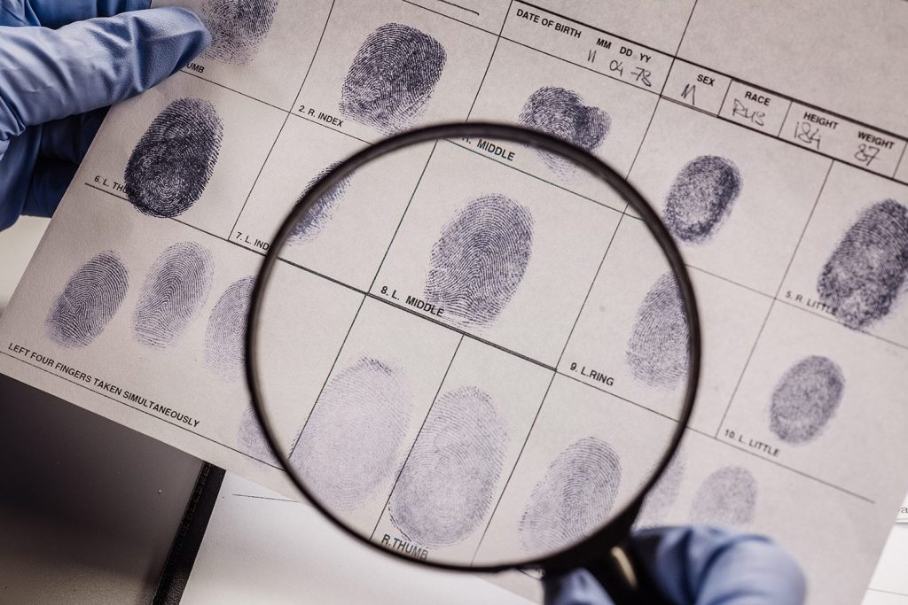 person studying the fingerprints of evidence