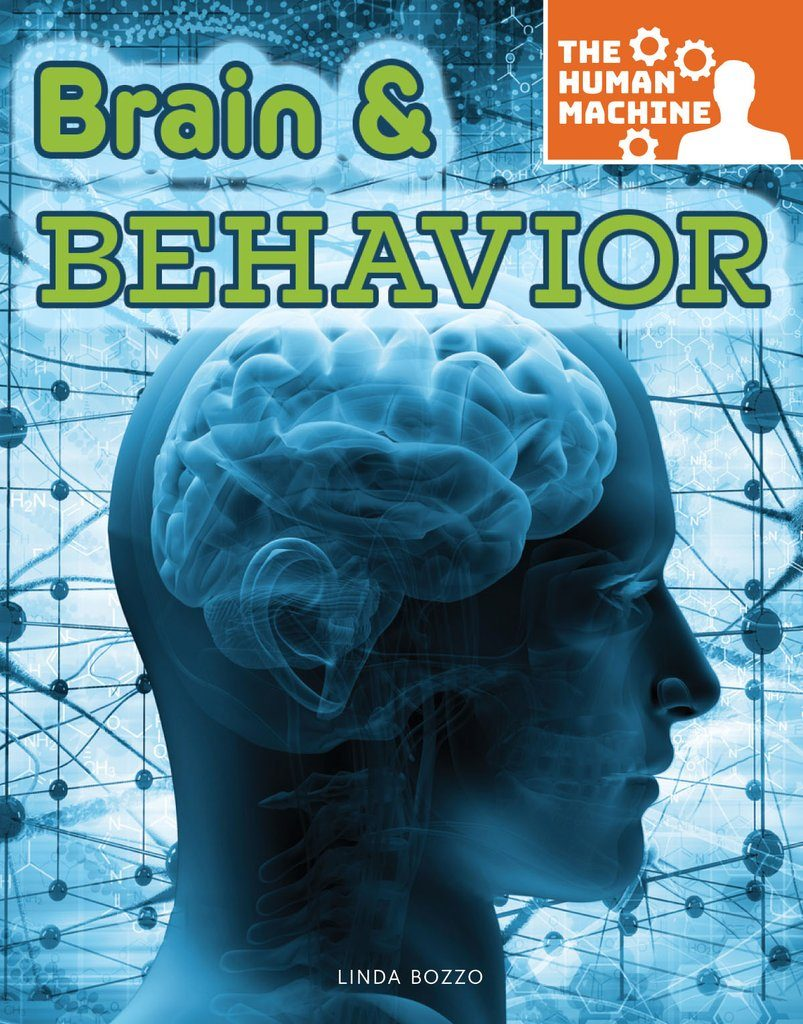A Brain & Behavior textbook cover