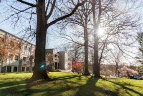 10 Coolest Courses at Cabrini University