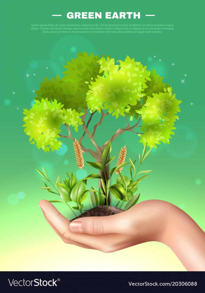 a hand holding a green tree and grass