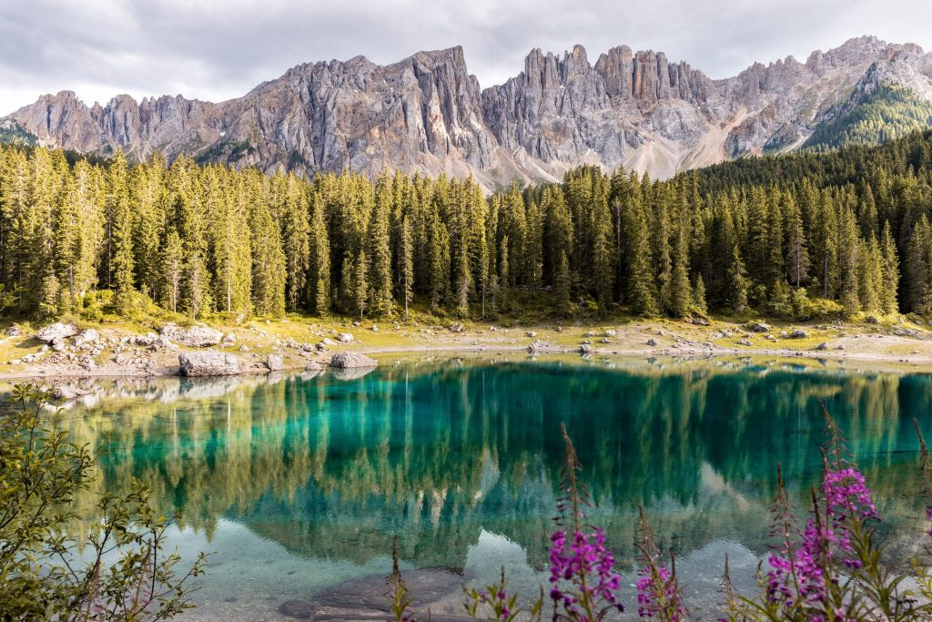 Lake, forest and mountains in the wilderness with reflective water