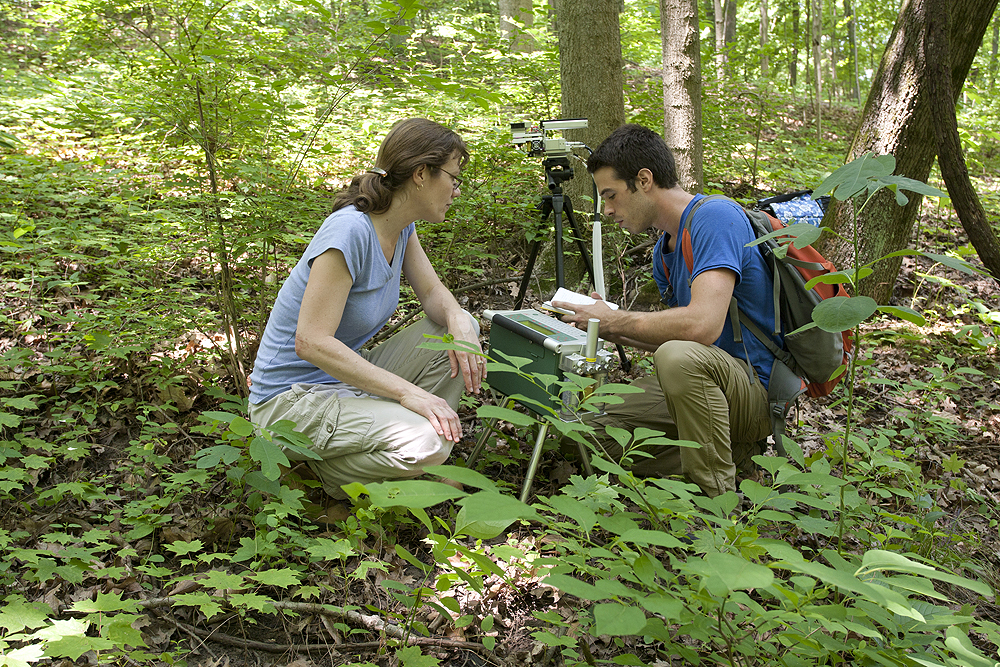 A male and a female conducting a field study in the forest