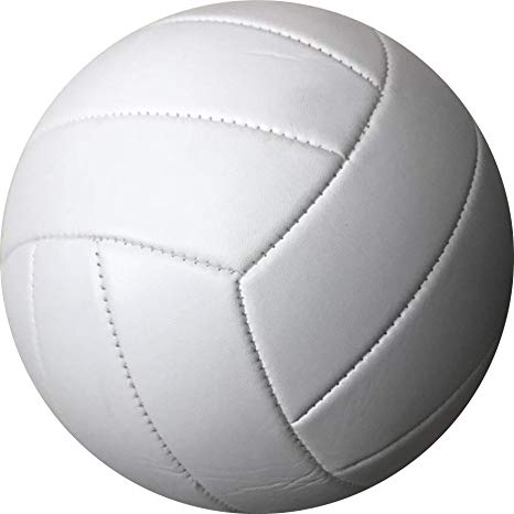 a photo of a volleyball