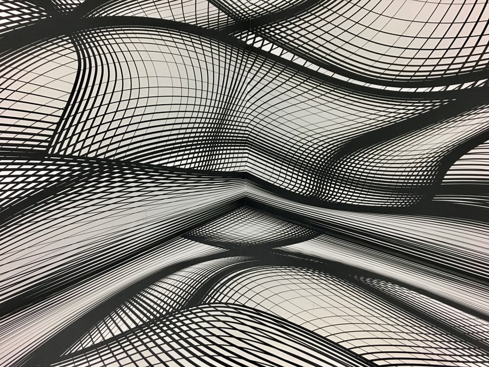 White and black abstract grid lines