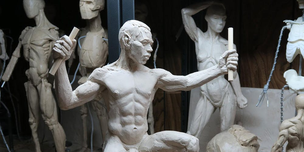 Sculptures of different human bodies in an exhibition