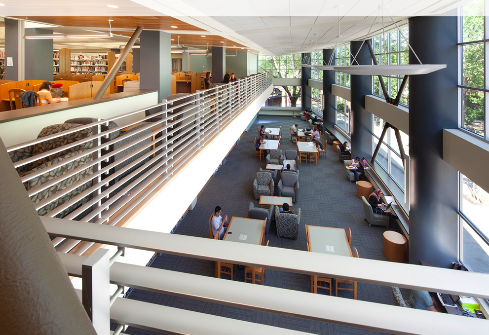 One of the many areas in the Library where students gather to study.