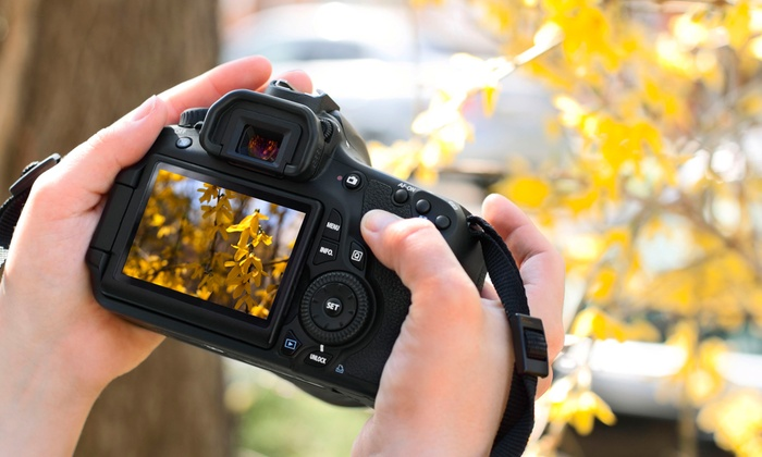 A person holding a digital camera, as they take pictures of fall leaves