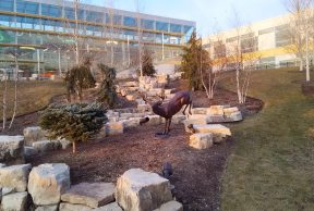 10 Buildings at the College of DuPage You Need to Know