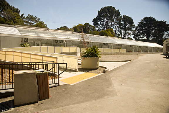 Greenhouse facility north of Hensill Hall
