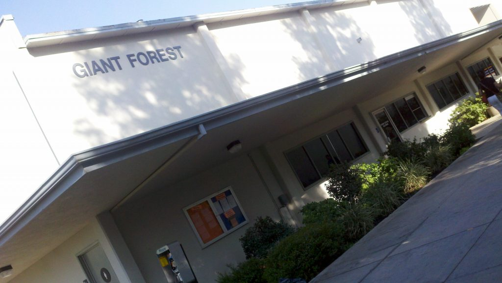 giant forest building entrance