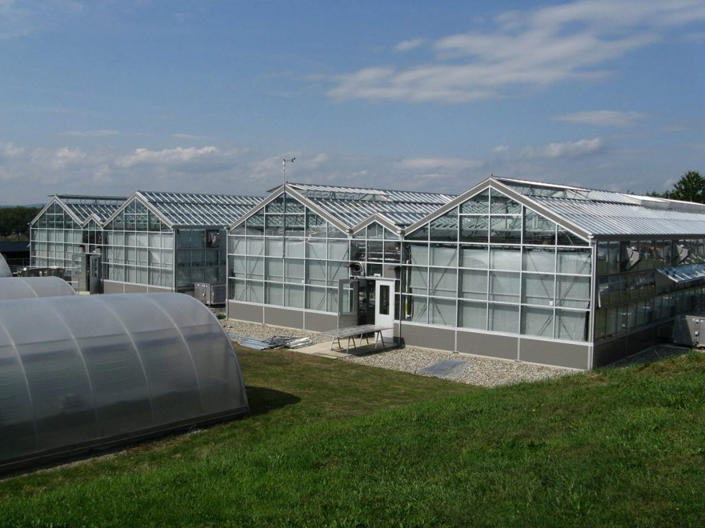 Research and Education Greenhouse and UMass Amherst