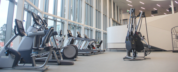 2nd floor cardio fitness area