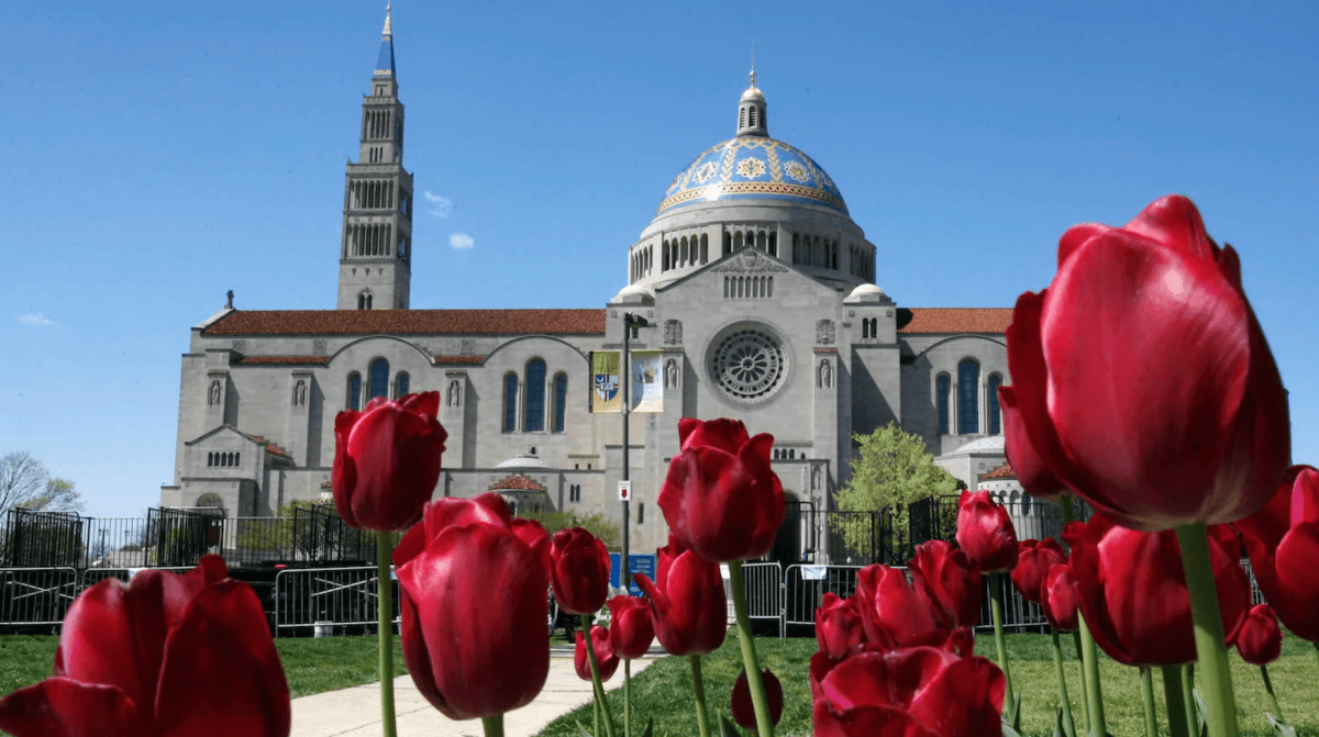 Top 10 Buildings You Need to Know at The Catholic University of America