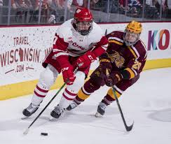 two hockey players fighting for the puck