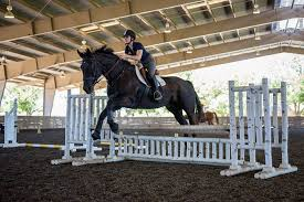 a person and their horse jumping over an obstacle