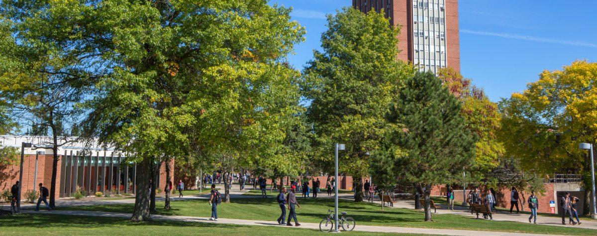 Top 10 Scholarships at Binghamton University