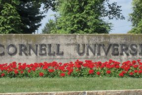 Top 10 Sports Teams at Cornell University