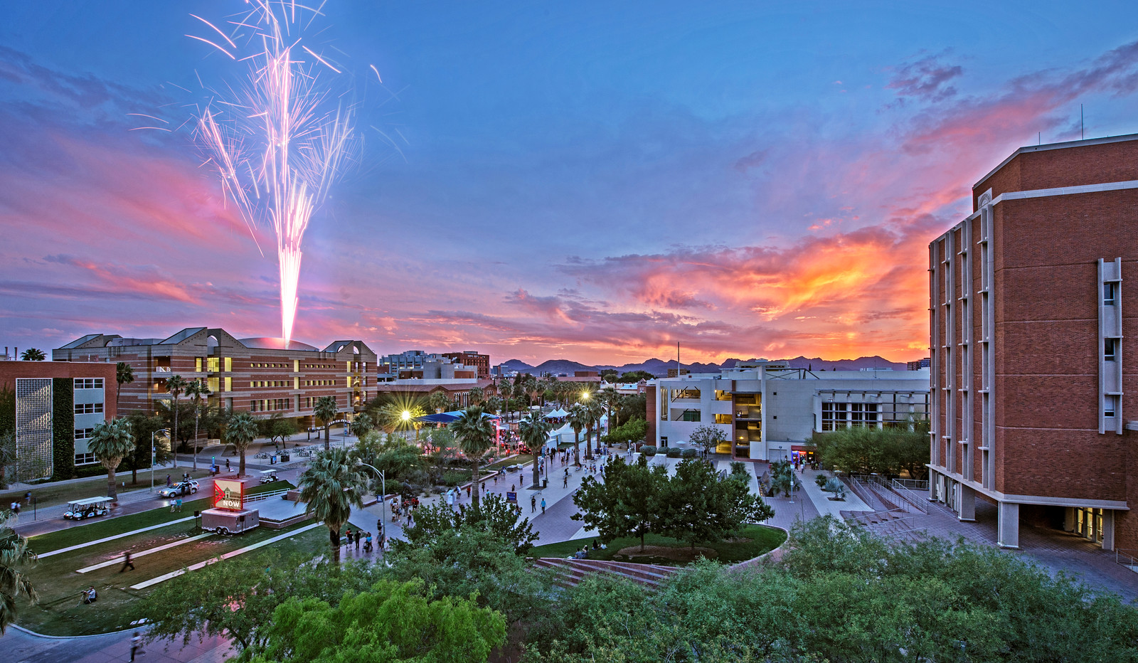 Top 10 Sports at University of Arizona