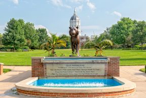 Tutoring Services at The University of Missouri