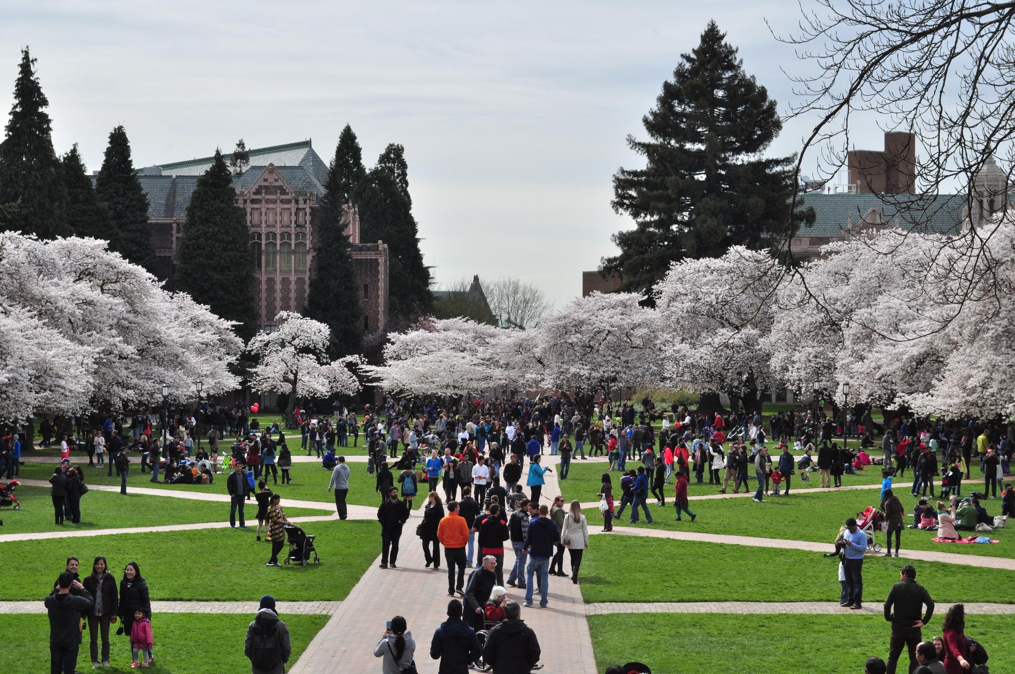 Tutoring Services at the University of Washington