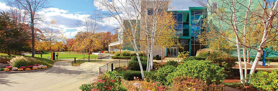Math Courses at Brandeis University