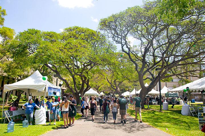 Math Courses at the University of Hawaii at Manoa