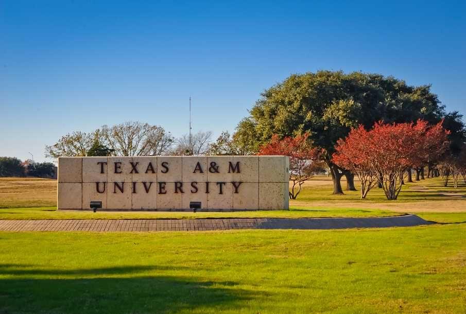 Math Courses at Texas A&M University