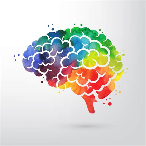 A drawing of a brain with a colorful appearance.