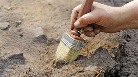 A person brushing the dirt with a brush tool.