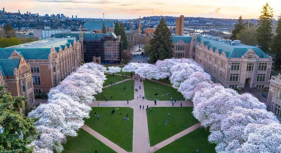 20 Online Courses at University of Washington 2020 Pandemic Edition